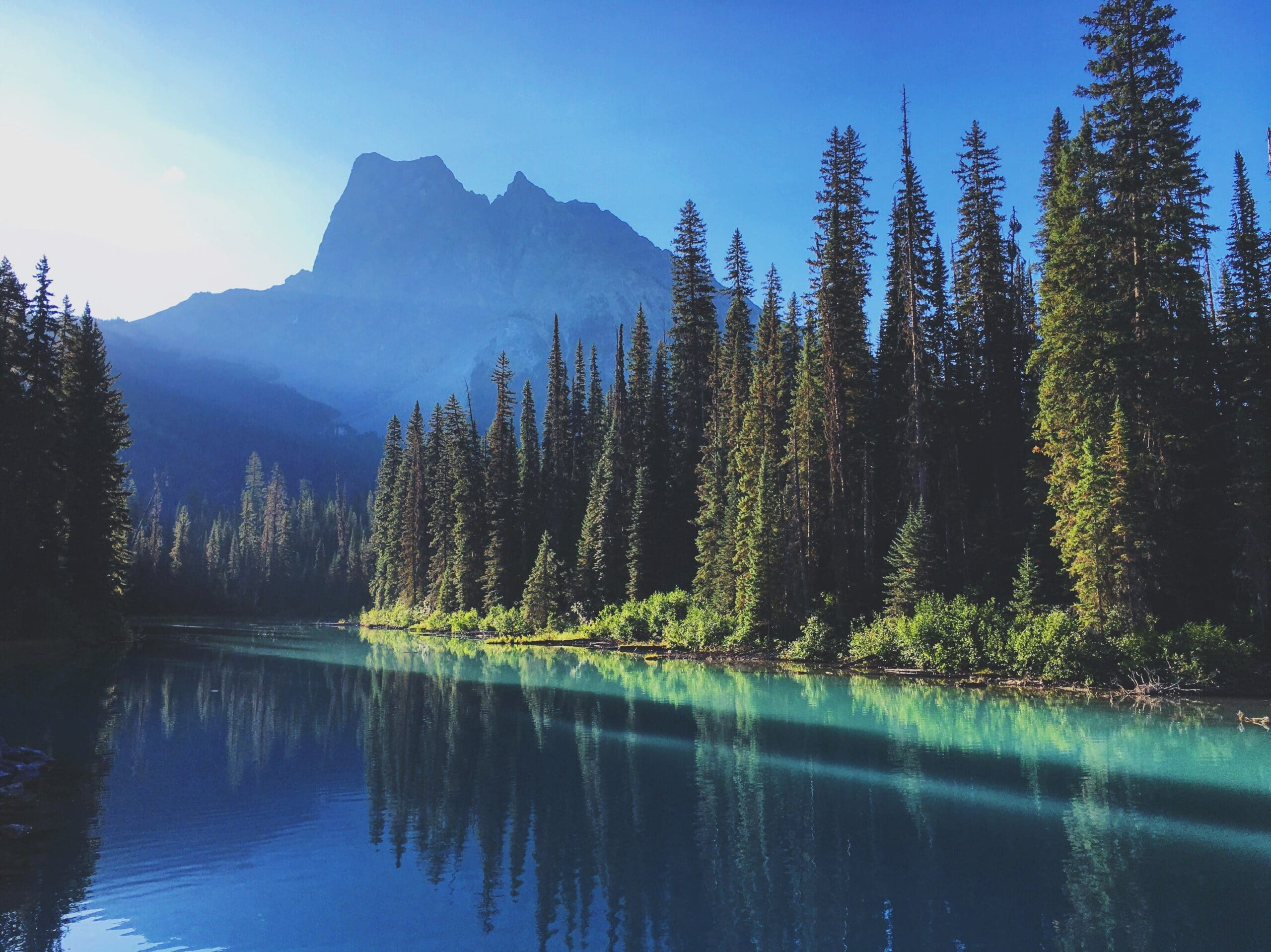 Cool blue lake with pine trees and a mountain