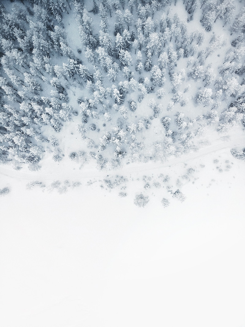 snowy tundra