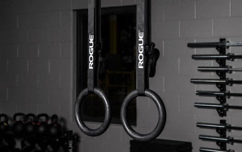 Rogue Plastic Gymnastic rings