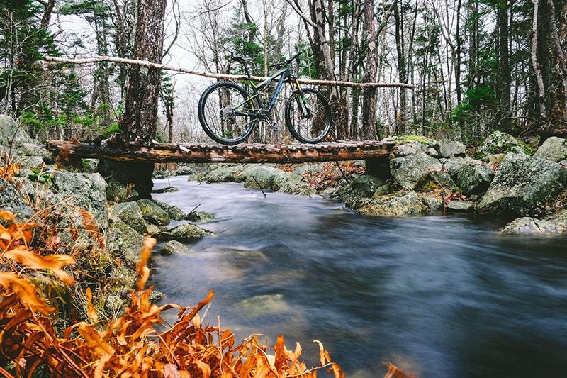 Fall colours and bike.